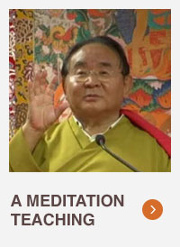 Sogyal Rinpoche portrait