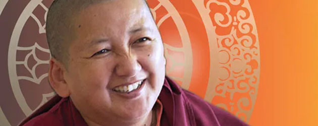 Jetsun Khandro Rinpoche header portrait