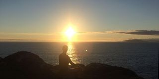 Meditation and Movement - OnLine - with Susan Browne and Matt Padwick